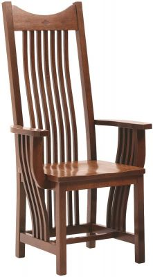 Desert Hills Arm Chair in Oak