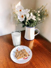 Crunchy Family Treat: Granola!