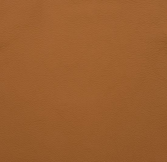 Golden Toffee leather