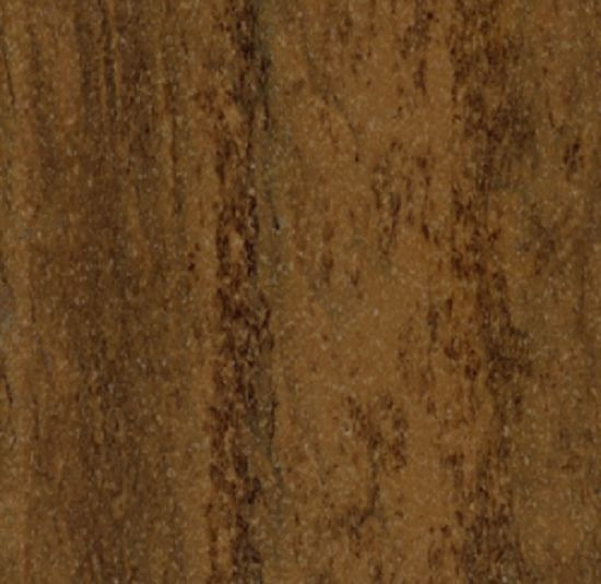 Wildwood Bark color